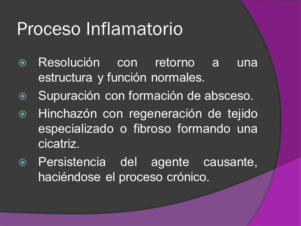 Proceso Inflamatorio Resolución con retorno a una estructura y función normales. Supuración con formación de absceso.