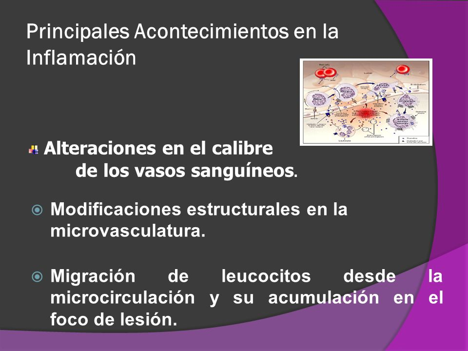 Principales Acontecimientos en la Inflamación