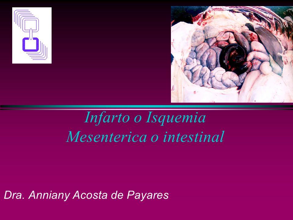 Infarto o Isquemia Mesenterica o intestinal