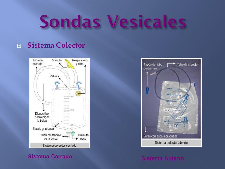 Sondas Vesicales Sistema Colector Sistema Cerrado Sistema Abierto
