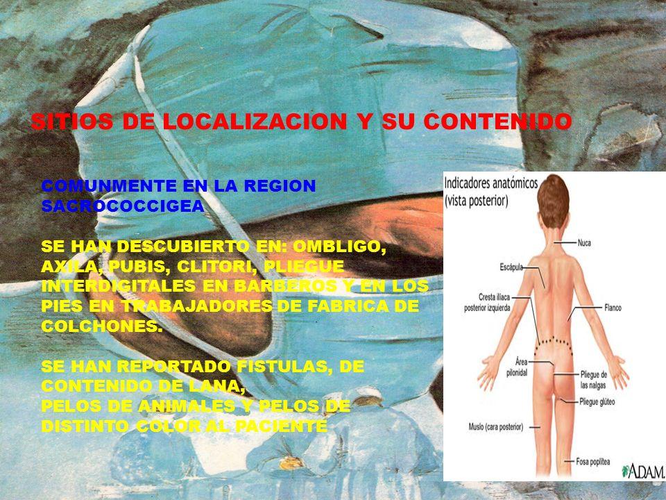 SITIOS DE LOCALIZACION Y SU CONTENIDO
