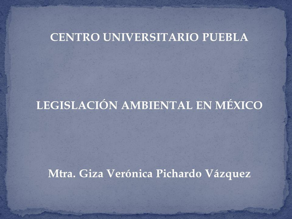 CENTRO UNIVERSITARIO PUEBLA Mtra. Giza Verónica Pichardo Vázquez