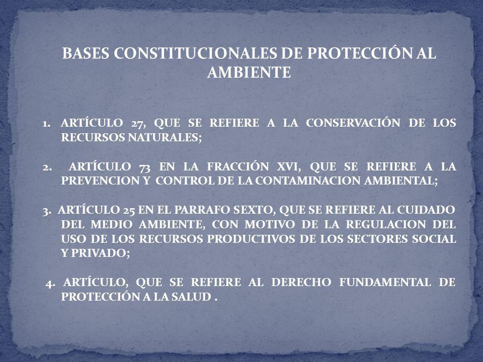 BASES CONSTITUCIONALES DE PROTECCIÓN AL AMBIENTE