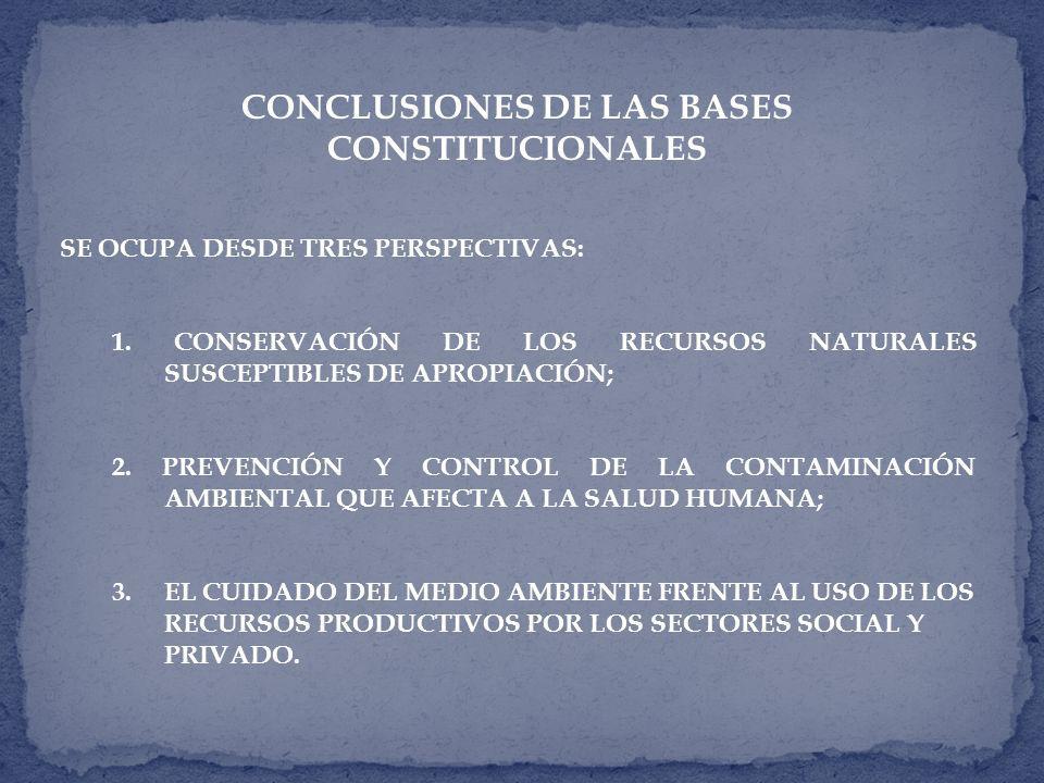 CONCLUSIONES DE LAS BASES CONSTITUCIONALES