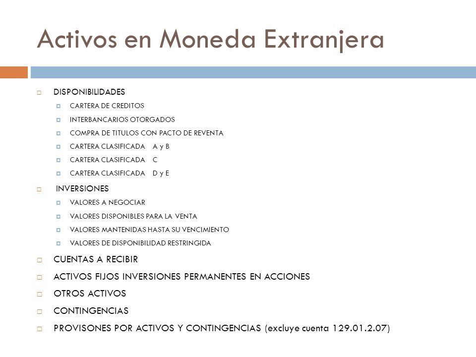 Activos en Moneda Extranjera