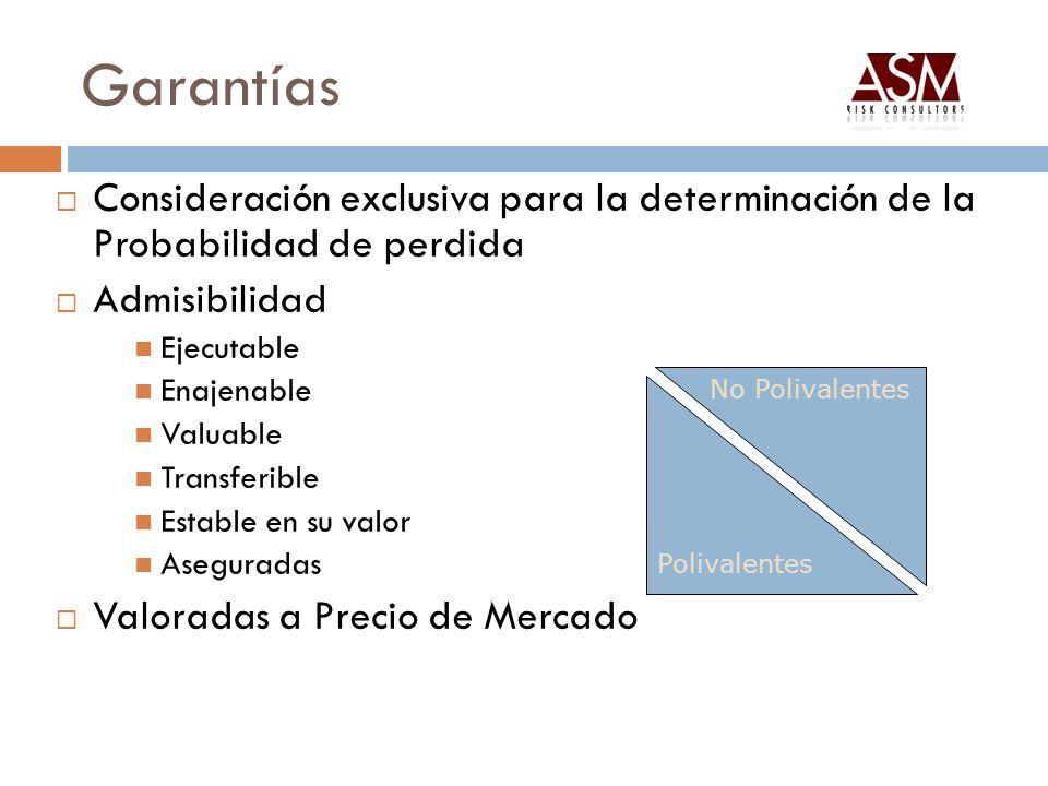 Garantías Consideración exclusiva para la determinación de la Probabilidad de perdida. Admisibilidad.