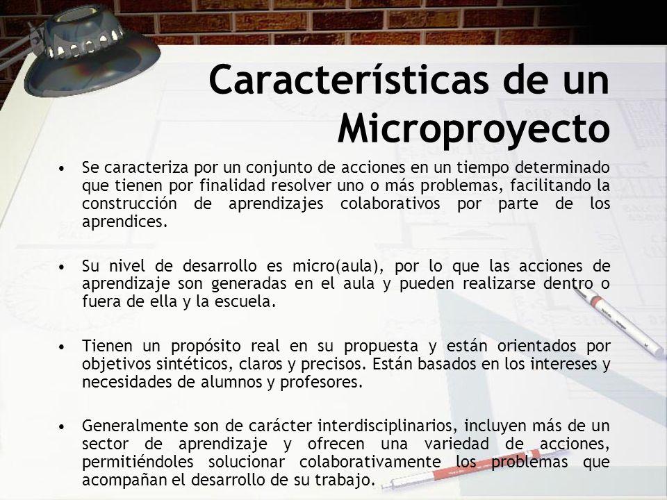 Características de un Microproyecto