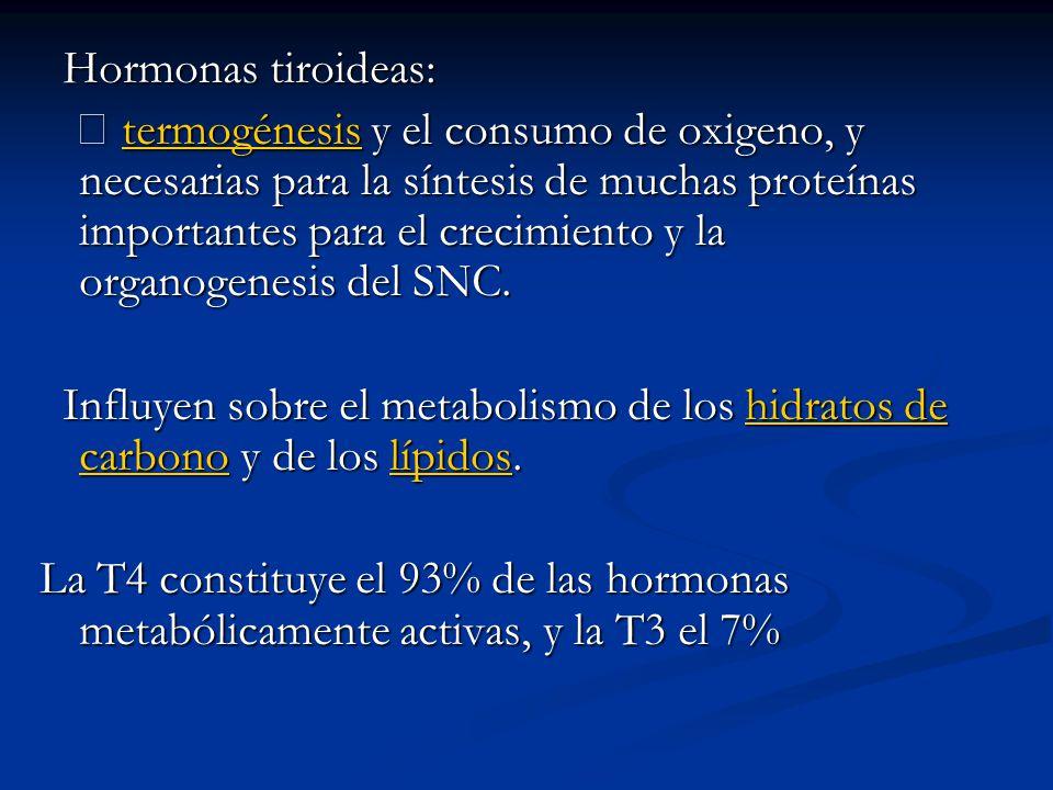 Hormonas tiroideas: