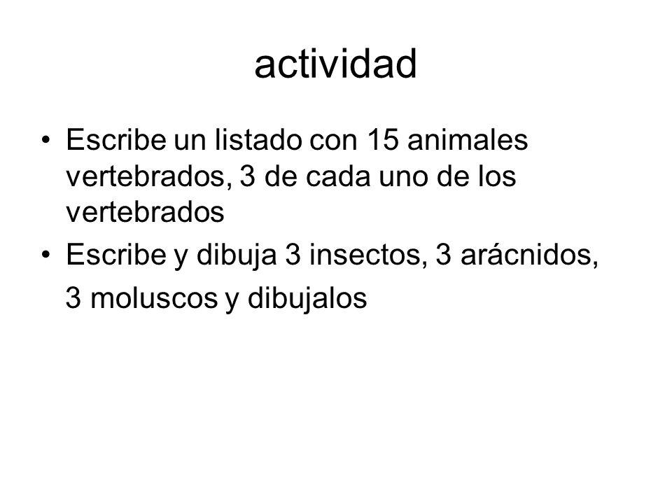 actividad Escribe un listado con 15 animales vertebrados, 3 de cada uno de los vertebrados. Escribe y dibuja 3 insectos, 3 arácnidos,