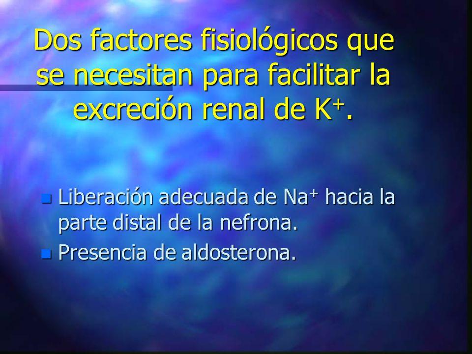 Dos factores fisiológicos que se necesitan para facilitar la excreción renal de K+.