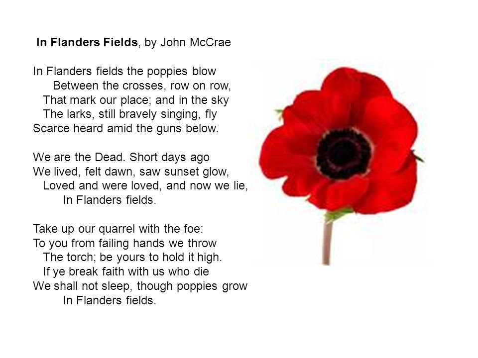 In Flanders Fields, by John McCrae