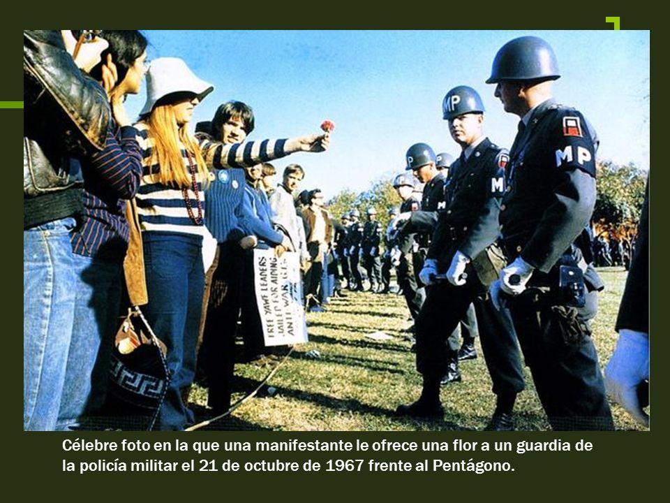 Célebre foto en la que una manifestante le ofrece una flor a un guardia de la policía militar el 21 de octubre de 1967 frente al Pentágono.