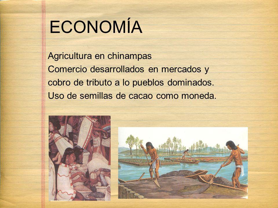 ECONOMÍA Agricultura en chinampas Comercio desarrollados en mercados y