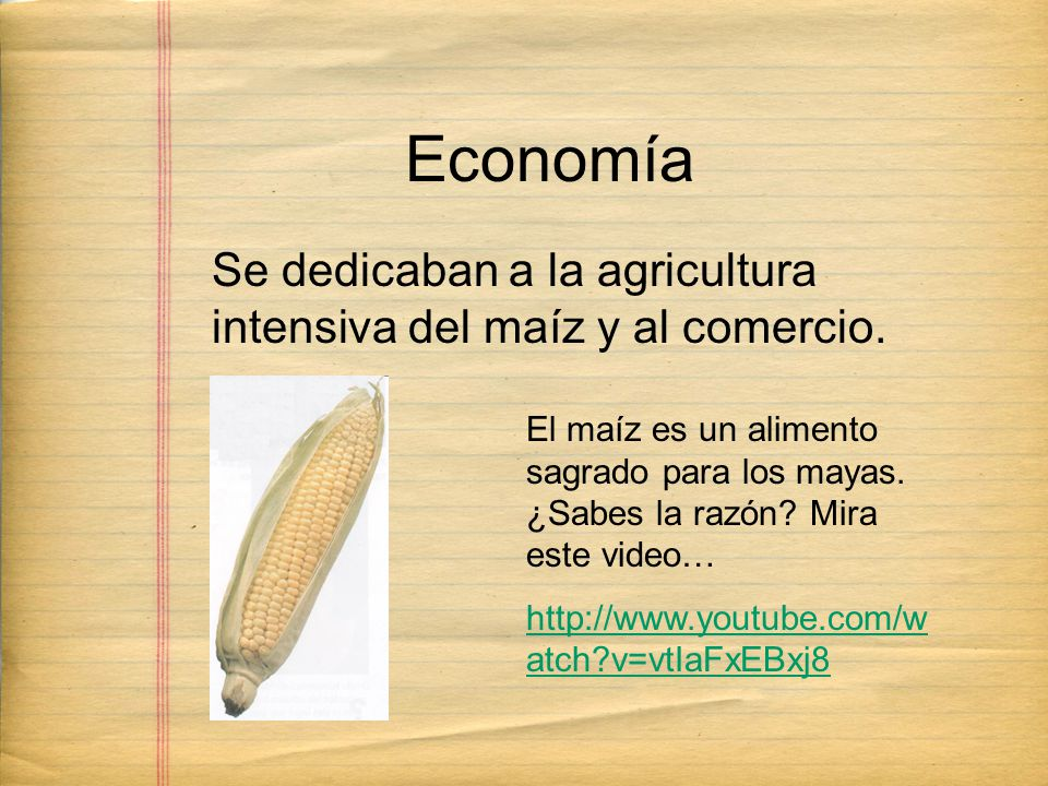 Economía Se dedicaban a la agricultura intensiva del maíz y al comercio.
