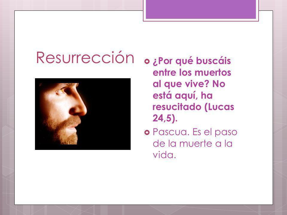 Resurrección ¿Por qué buscáis entre los muertos al que vive No está aquí, ha resucitado (Lucas 24,5).