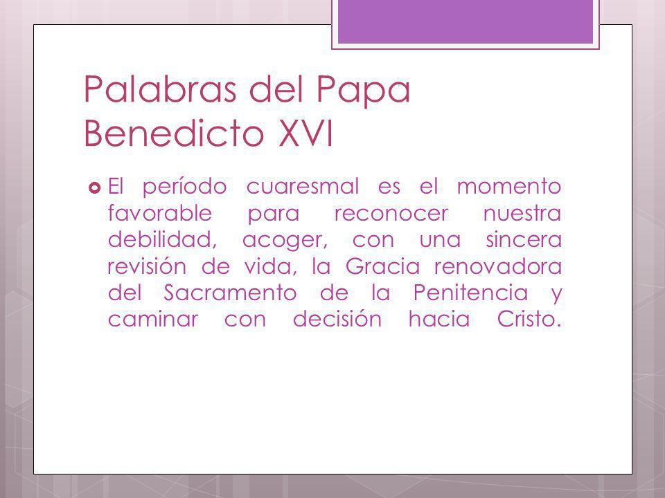 Palabras del Papa Benedicto XVI