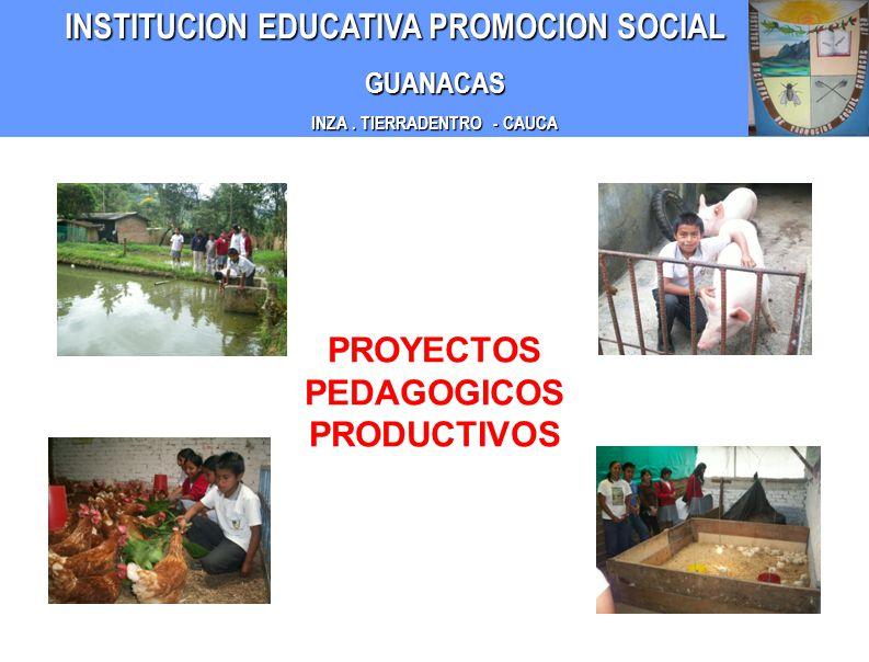 INZA . TIERRADENTRO - CAUCA PROYECTOS PEDAGOGICOS PRODUCTIVOS