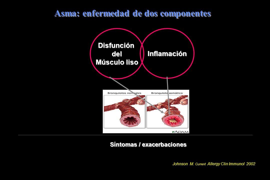 Asma: enfermedad de dos componentes
