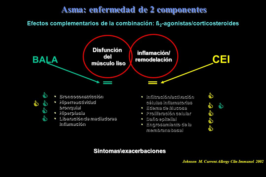 Asma: enfermedad de 2 componentes