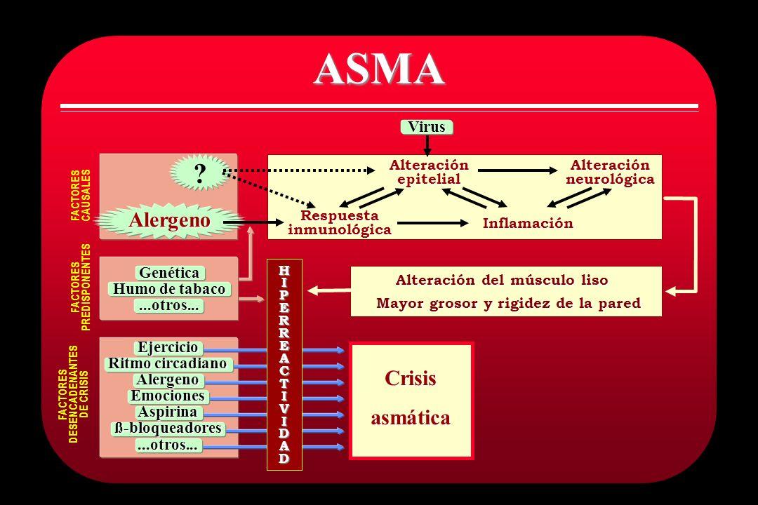 ASMA Alergeno Crisis asmática Virus Genética Humo de tabaco