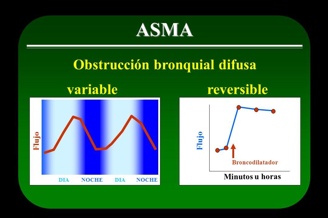 ASMA Obstrucción bronquial difusa variable reversible Flujo Flujo