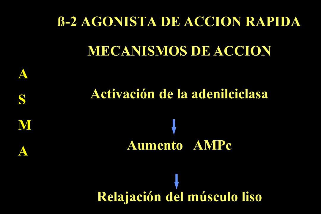 ß-2 AGONISTA DE ACCION RAPIDA