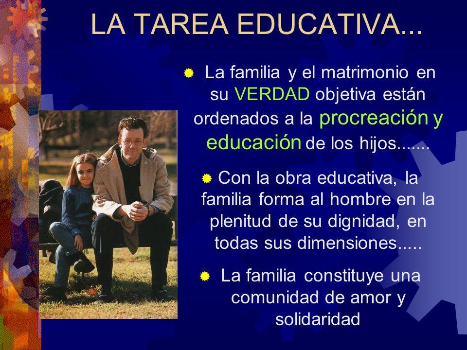 La familia constituye una comunidad de amor y solidaridad