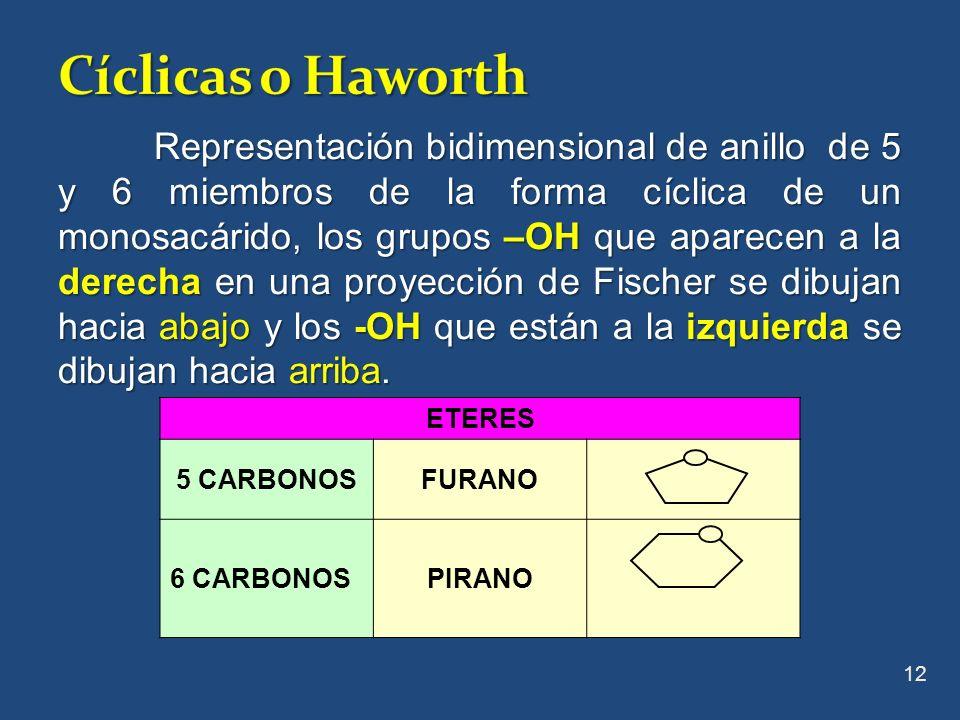 Cíclicas o Haworth
