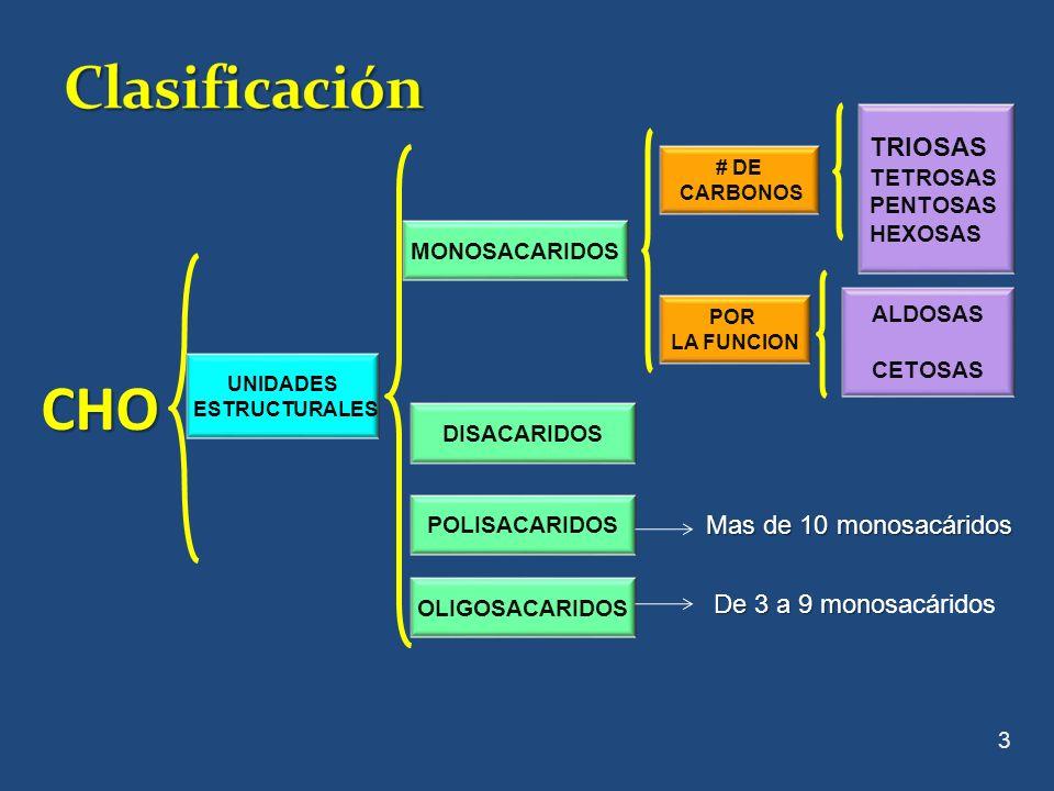 CHO Clasificación TRIOSAS x Mas de 10 monosacáridos
