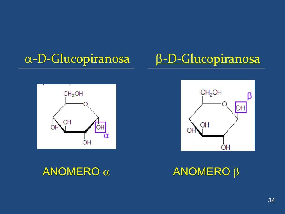 a-D-Glucopiranosa b-D-Glucopiranosa ANOMERO a ANOMERO b