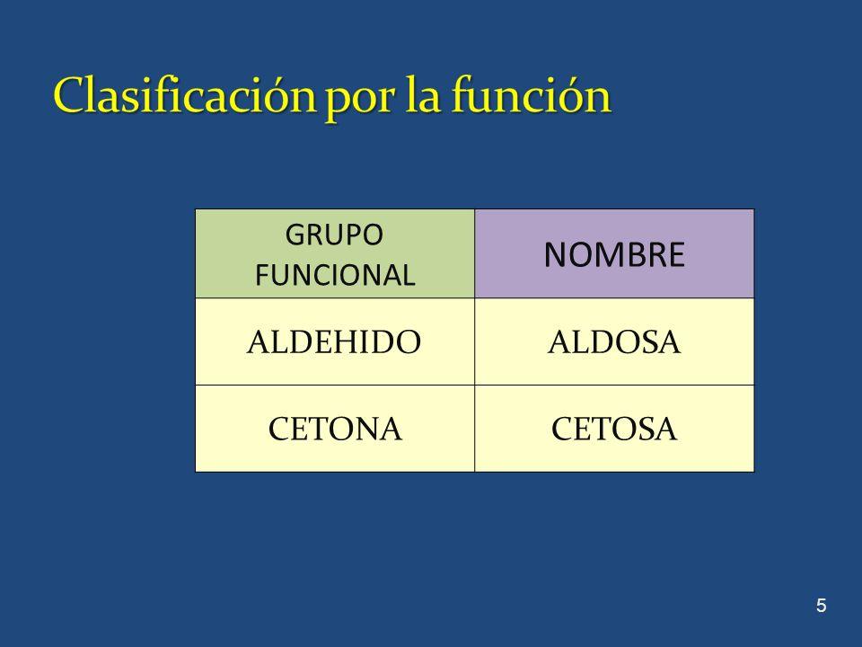 Clasificación por la función