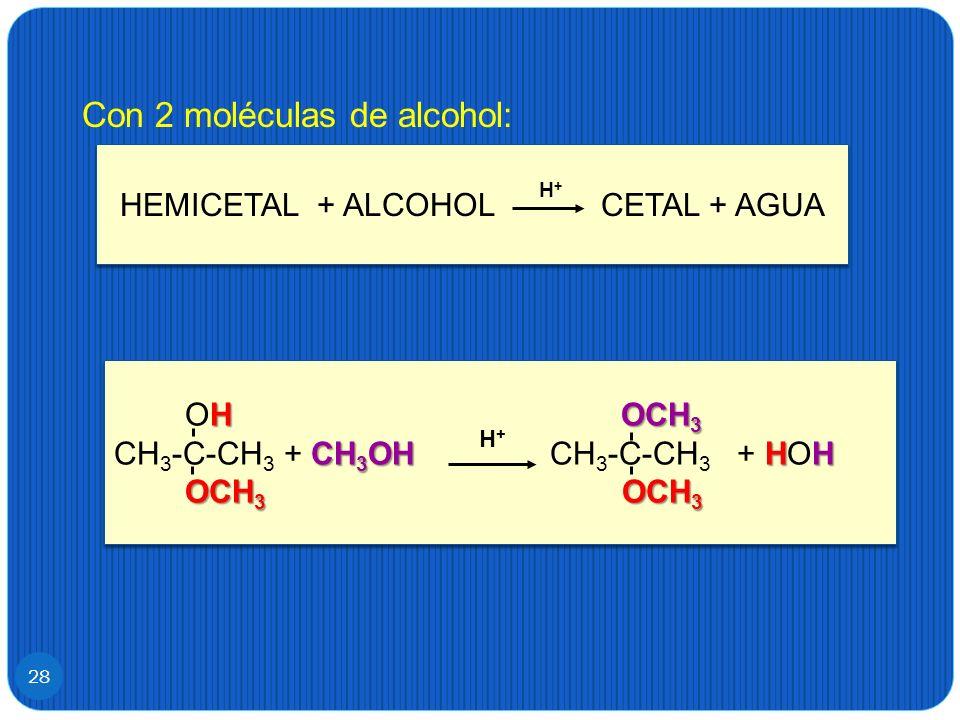 HEMICETAL + ALCOHOL CETAL + AGUA
