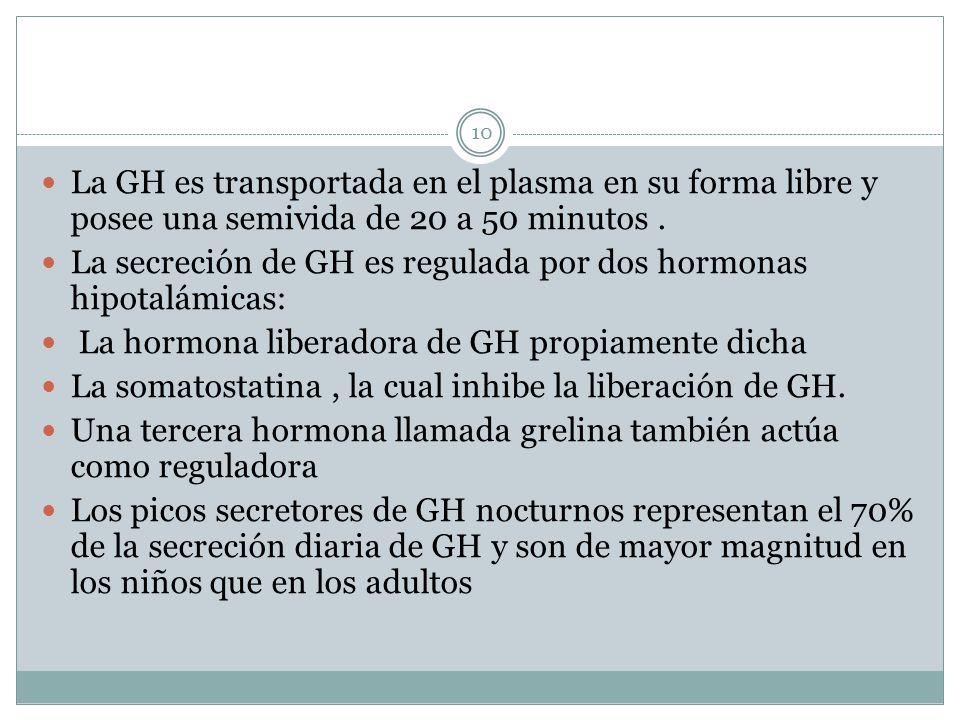 La GH es transportada en el plasma en su forma libre y posee una semivida de 20 a 50 minutos .