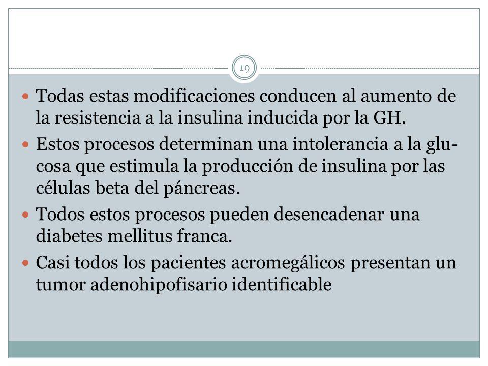 Todas estas modificaciones conducen al aumento de la resistencia a la insulina inducida por la GH.