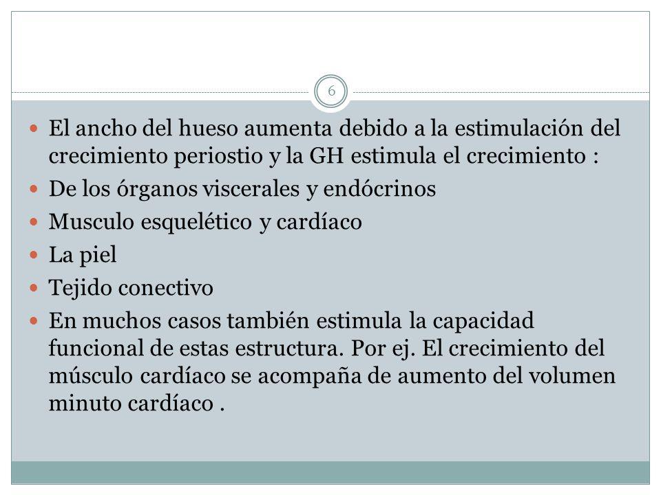 El ancho del hueso aumenta debido a la estimulación del crecimiento periostio y la GH estimula el crecimiento :