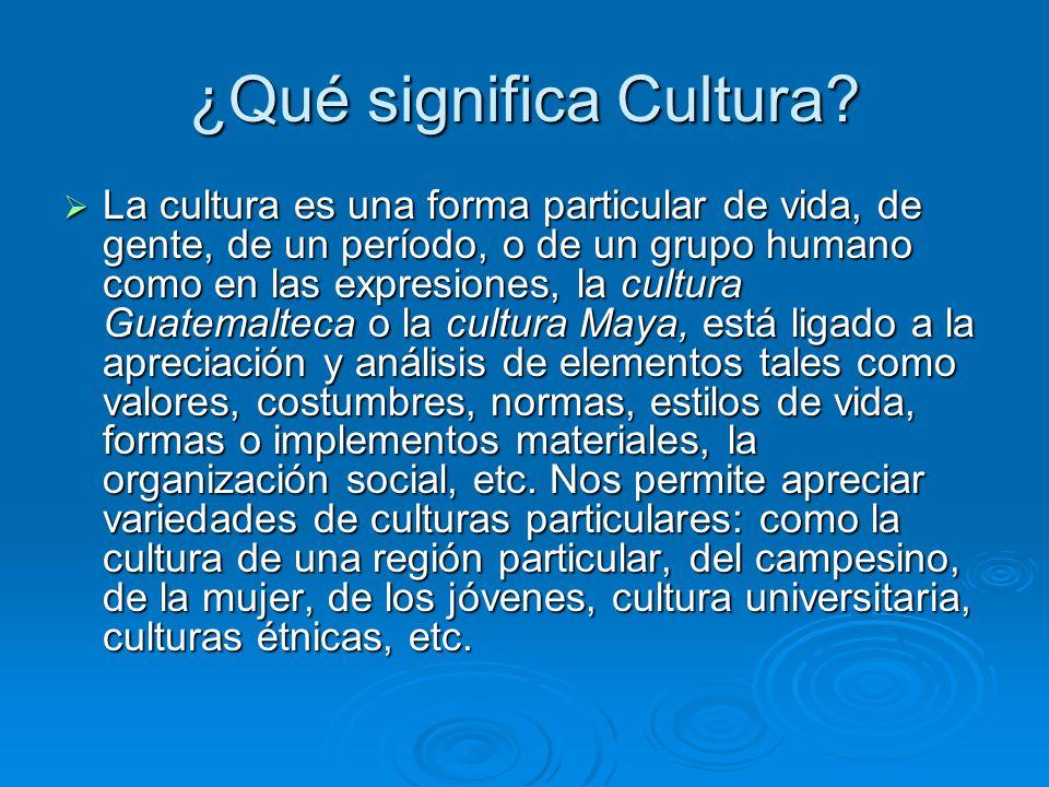 ¿Qué significa Cultura