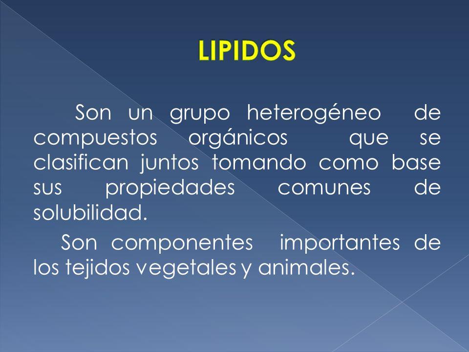LIPIDOS Son un grupo heterogéneo de compuestos orgánicos que se clasifican juntos tomando como base sus propiedades comunes de solubilidad.