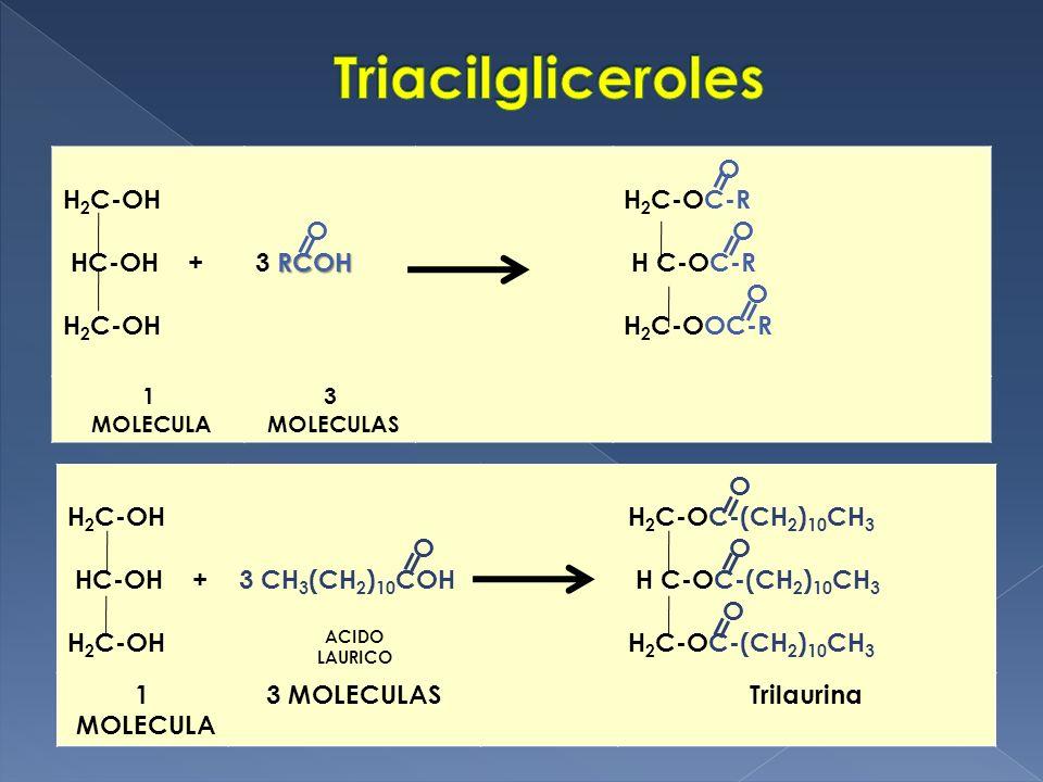 Triacilgliceroles H2C-OH HC-OH + O 3 RCOH H2C-OC-R H C-OC-R H2C-OOC-R