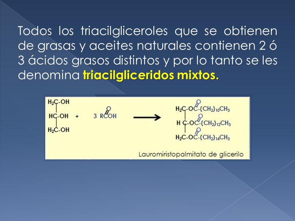 Todos los triacilgliceroles que se obtienen de grasas y aceites naturales contienen 2 ó 3 ácidos grasos distintos y por lo tanto se les denomina triacilgliceridos mixtos.