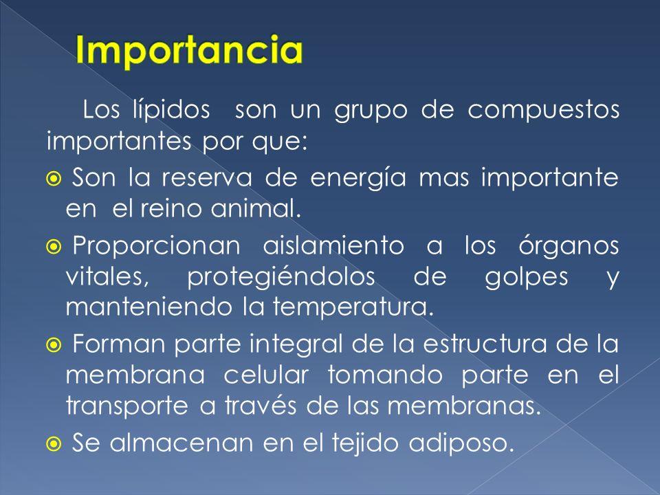 ImportanciaLos lípidos son un grupo de compuestos importantes por que: Son la reserva de energía mas importante en el reino animal.