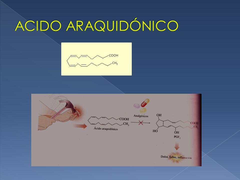 ACIDO ARAQUIDÓNICO COOH CH3
