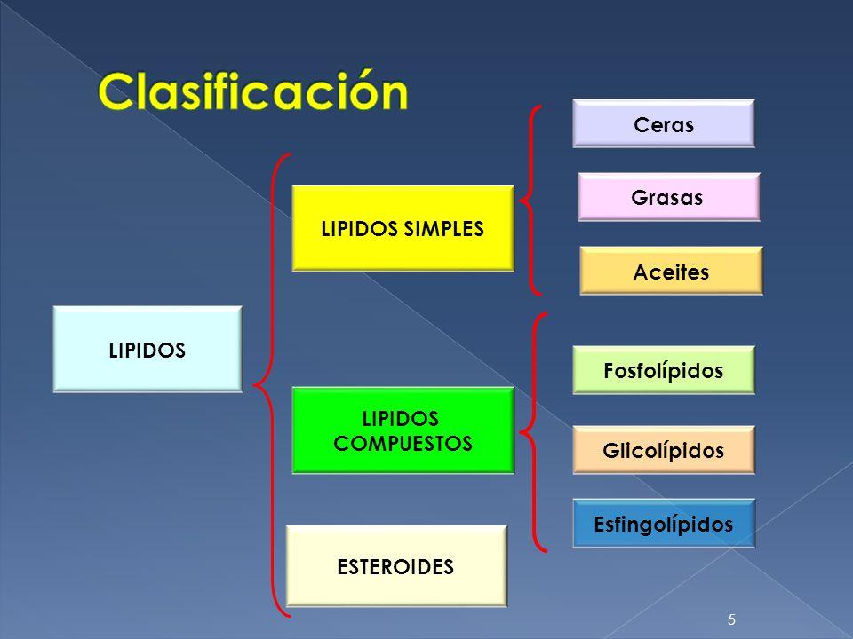Clasificación Ceras Grasas LIPIDOS SIMPLES Aceites LIPIDOS