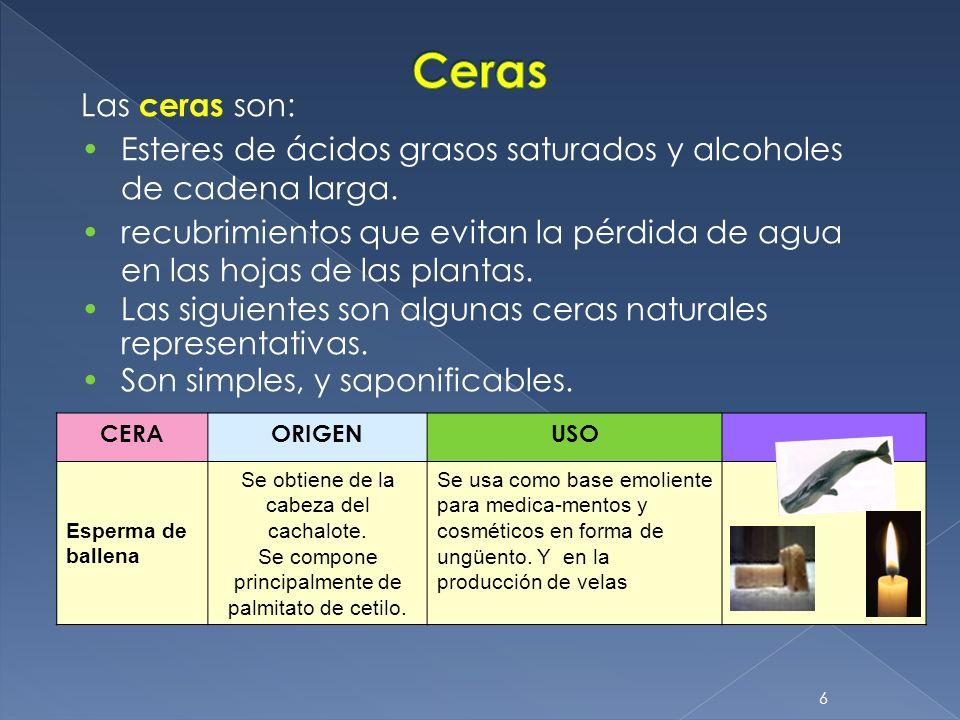 Ceras Las ceras son: Esteres de ácidos grasos saturados y alcoholes de cadena larga.