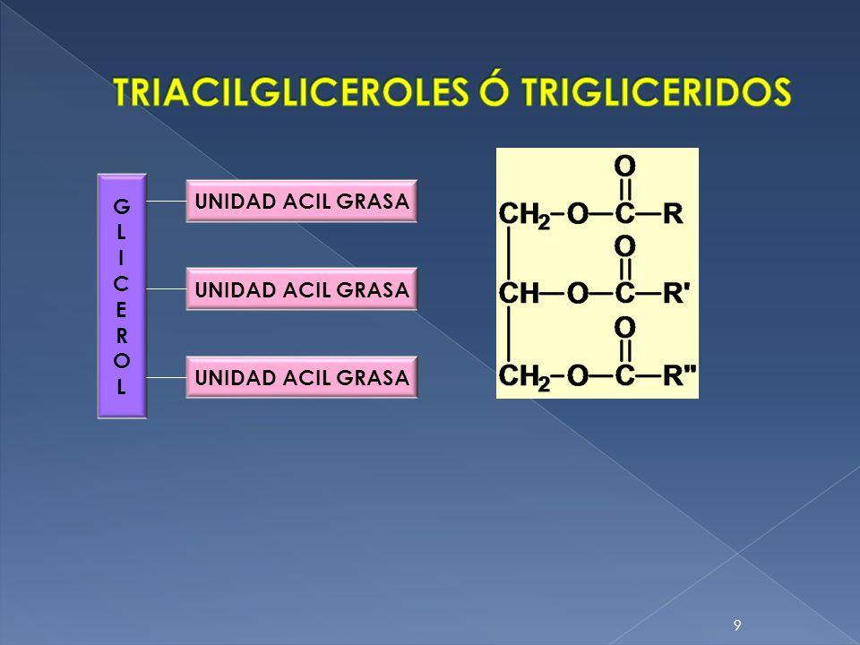 TRIACILGLICEROLES Ó TRIGLICERIDOS