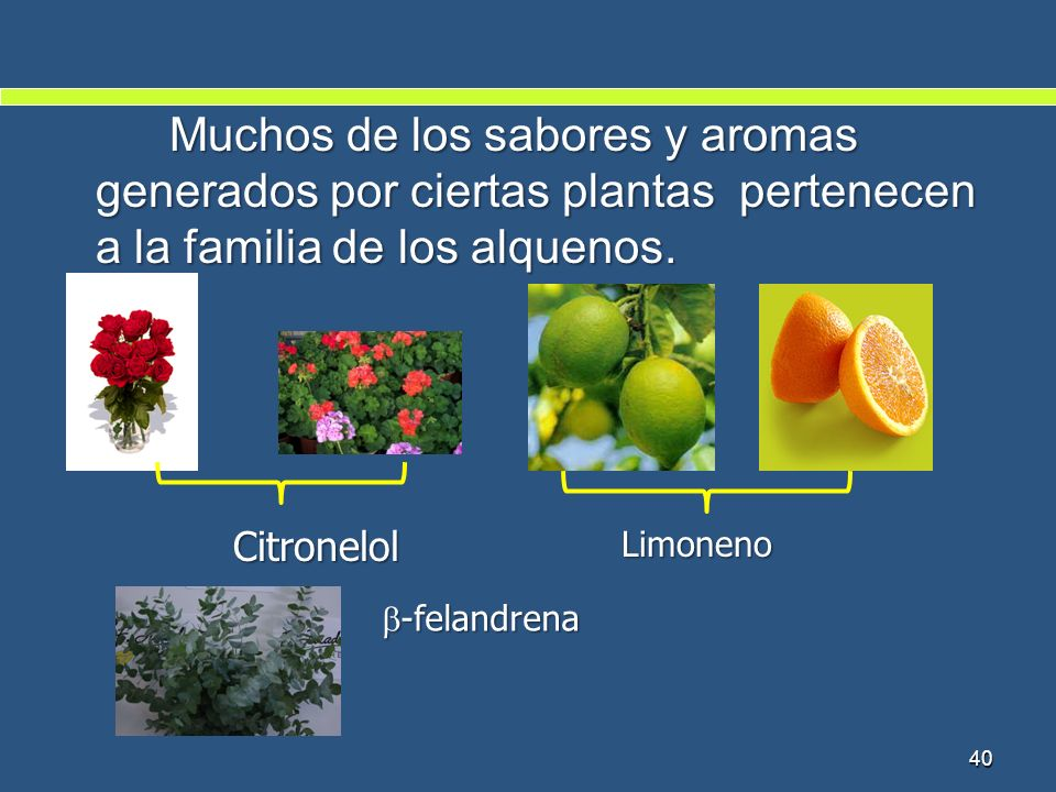 Muchos de los sabores y aromas generados por ciertas plantas pertenecen a la familia de los alquenos.