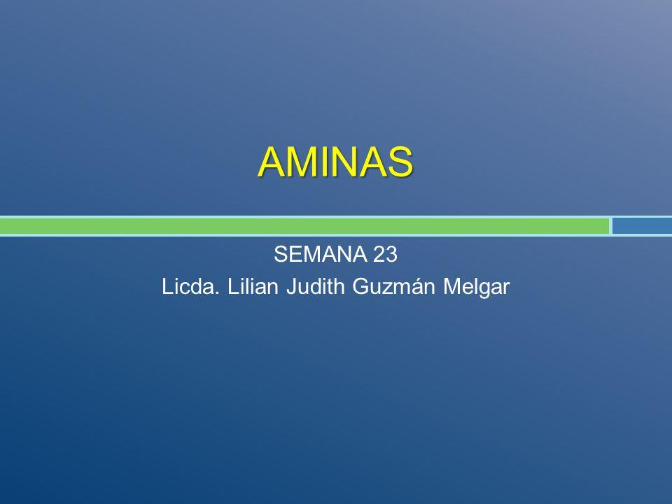 SEMANA 23 Licda. Lilian Judith Guzmán Melgar