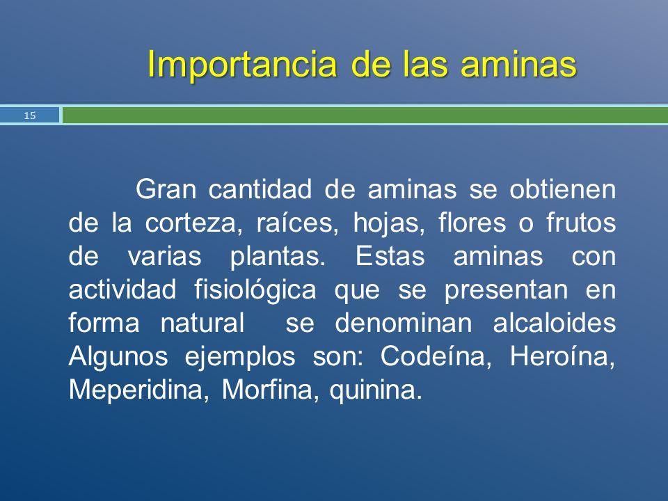 Importancia de las aminas