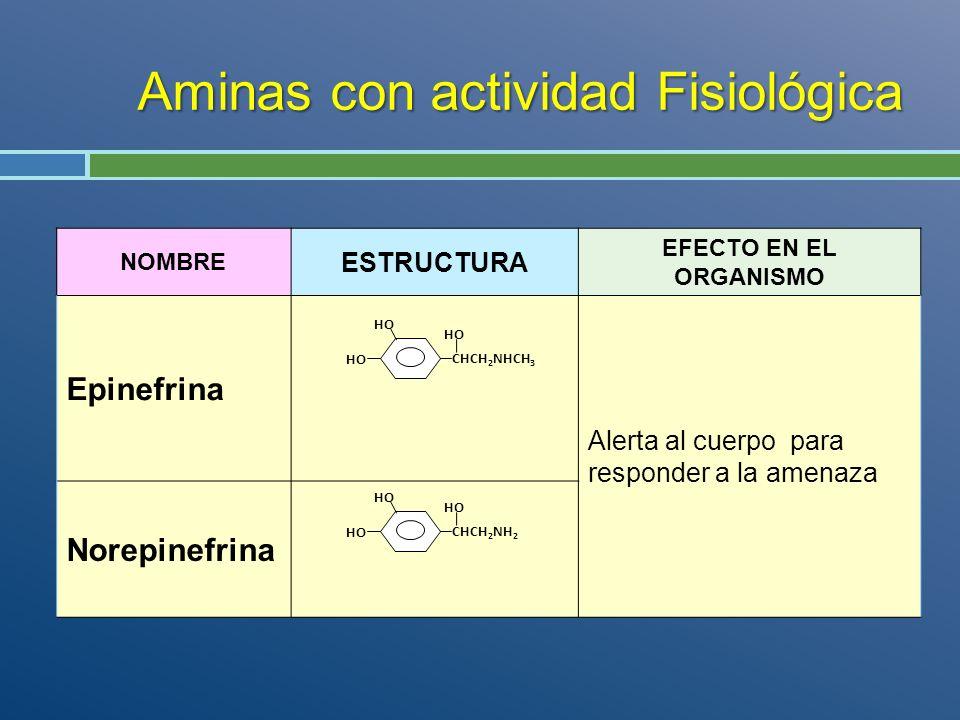 Aminas con actividad Fisiológica