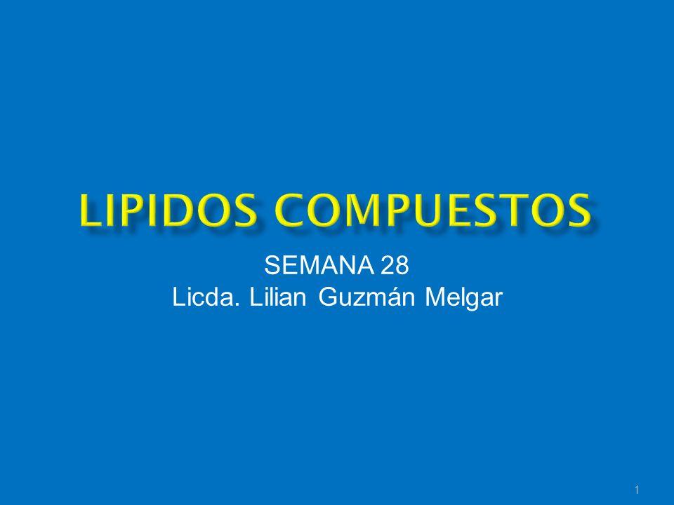 SEMANA 28 Licda. Lilian Guzmán Melgar