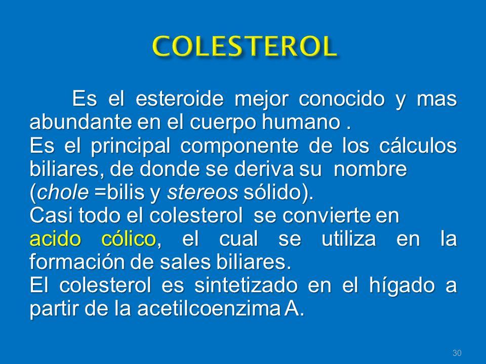 COLESTEROL Es el esteroide mejor conocido y mas abundante en el cuerpo humano .